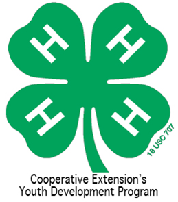 Cover photo for 4-H Project Book Workshop   November 15, 2012