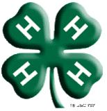 Cover photo for 4-H Leader Training Series 2013