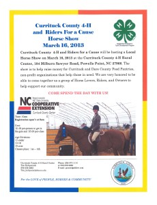 Cover photo for Currituck County 4-H  and  Riders for a Cause  Horse Show