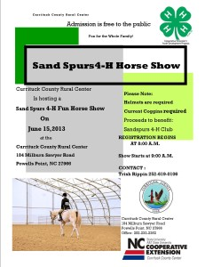 Cover photo for Local Horse Show!