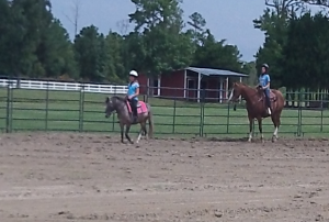 Cover photo for Horsemanship 101 Camp