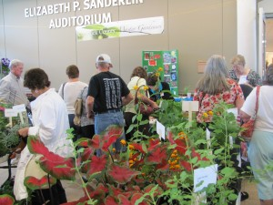Cover photo for Currituck Home, Flower and Garden Show