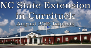 Cover photo for Impacts-August 2016