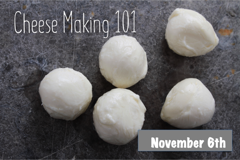 Cheese Making 101 workshop poster
