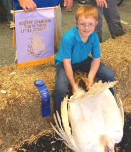 Cover photo for NCSU, 2018 Youth Market Turkey Show Registration