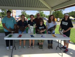 Cover photo for 2018 Currituck County 4-H Poultry Show