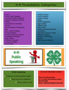 Cover photo for 4-H Presentations / District Activity Day