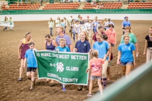Cover photo for Currituck County 4-H Members Compete in 2018 Horse Show