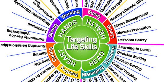 Life skills chart image