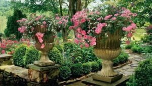 urns with pink flowers