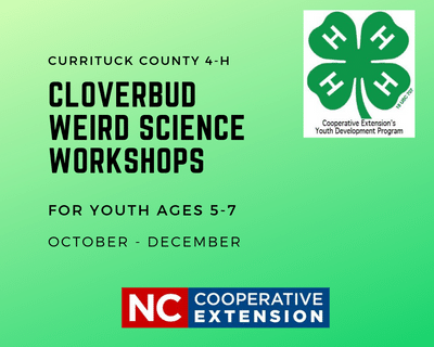 Cloverbud Workshop