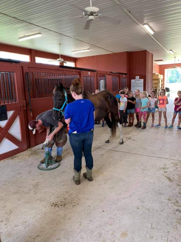 Farrior showing youth how to clean, trim and re-shoe a horse