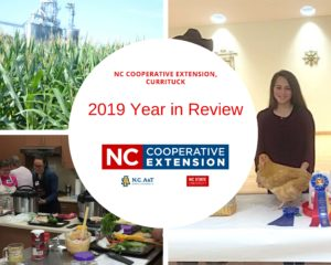 collage with pics of corn, cooking class and girl with prize winning chicken