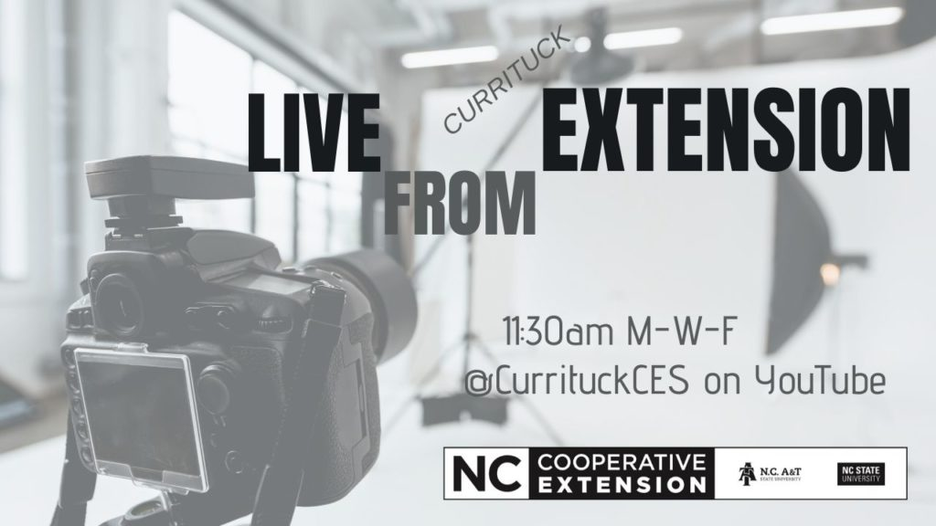 Ad for Live for Extension with camera and screen