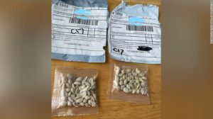 Seed packages from China (Photo CNN)