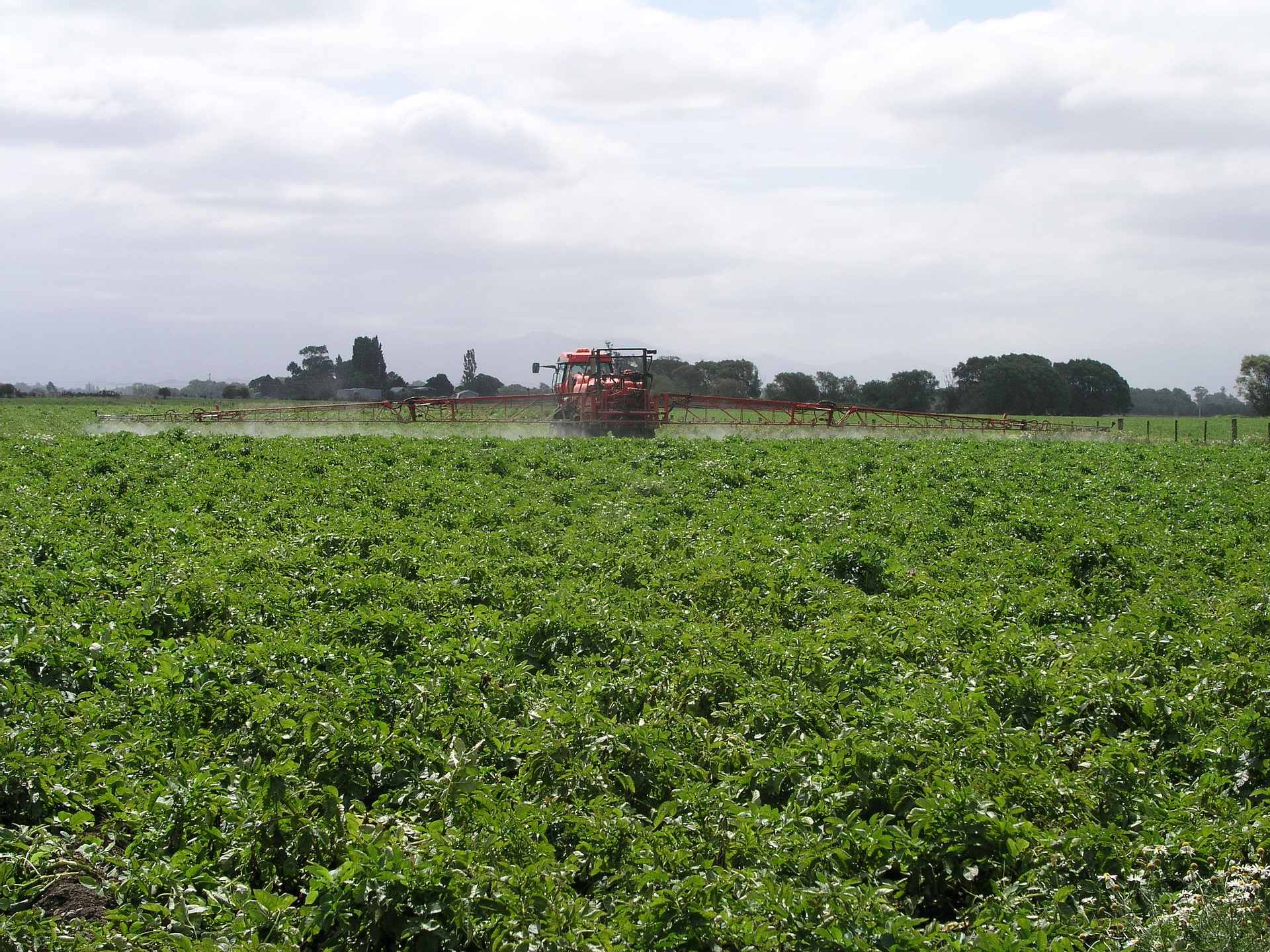 farm field with tractor spraying pesticides