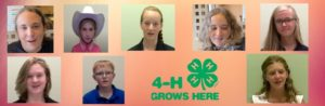 Cover photo for Currituck County 4-H'ers Excel in District & State Public Speaking Competition