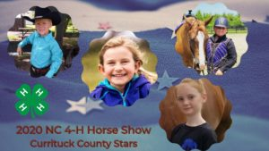 winners of horse show