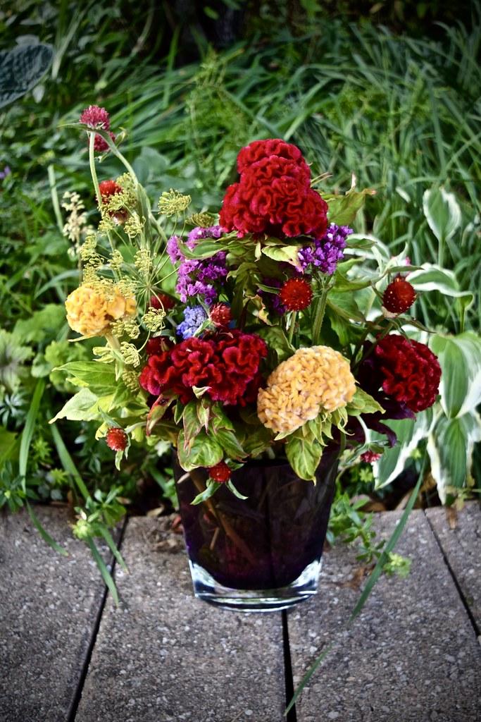 bouquet of cut flowers