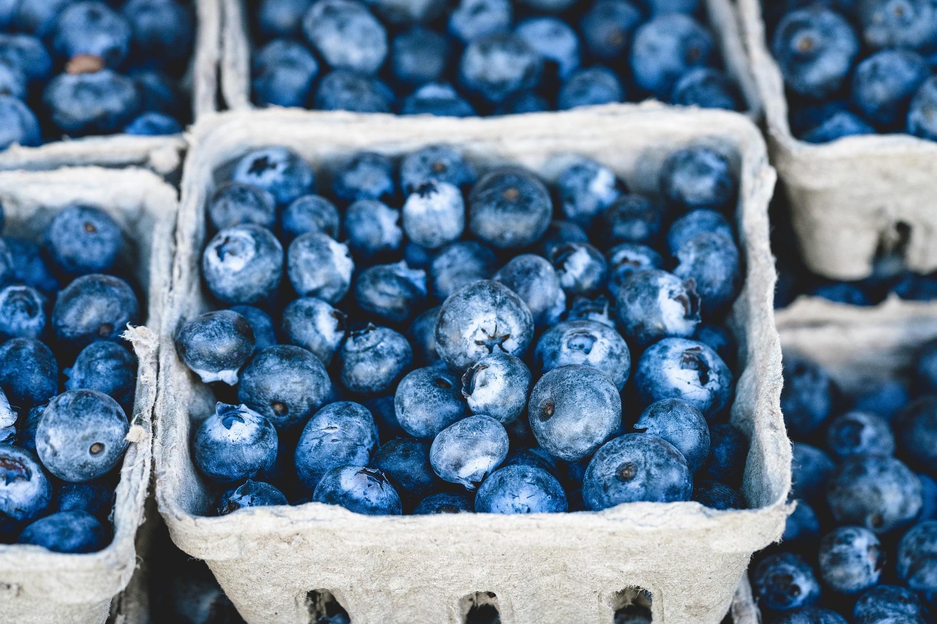blueberries in carton