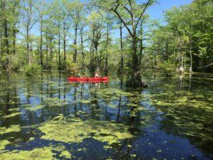 pond with canoe