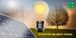 4-H Electricity Series