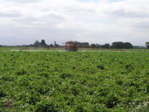 tractor spraying farm fields